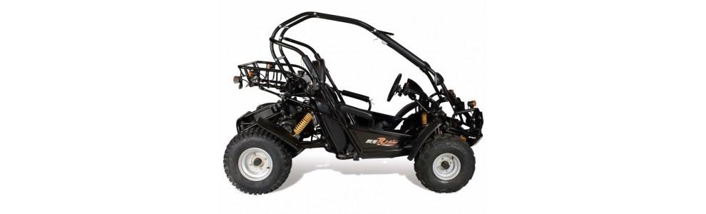BUGRIDER 200cc