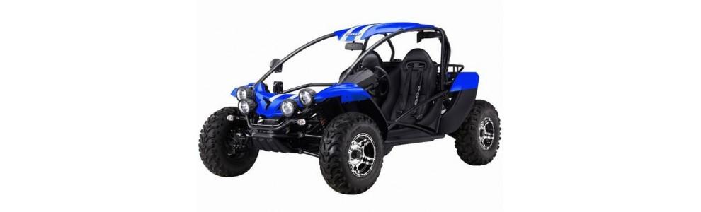 BUGRIDER 600cc