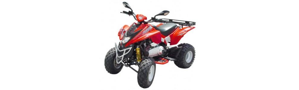DL801 350cc